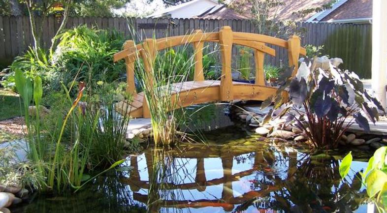 Pensacola Seed Garden Landscaping Home Page